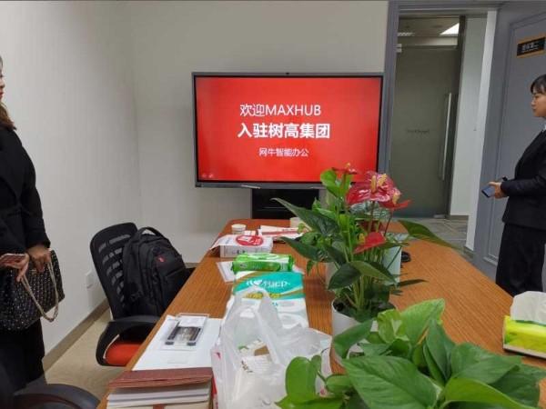 树高集团使用MAXHUB会议平板